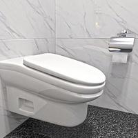 Lőttek a WC-n üldögélésnek