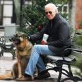 Twitterre költöztek a Biden-kutyák