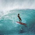 A szörf aranykora fotókon