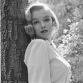Sosem látott szexi képek Marilyn Monroe-ról