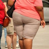 Brutálisan elhízott a világ
