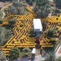 A világ legnagyobb labirintusa