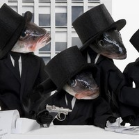 Az egész világ hal