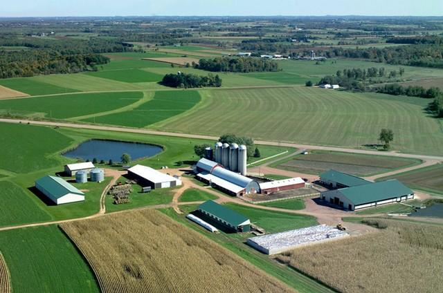 mezőgazdaság.jpg