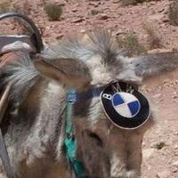 BMW-gyár épülHET Magyarországon illiberálisan