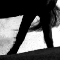 Pécsi Sándor: Kőbálvány visszanéz