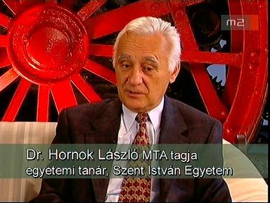Hornok László mta.jpg