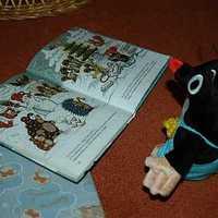 Mit olvas, Kisvakond?