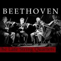 Só, hagyma és Beethoven opus 131-es vonósnégyese