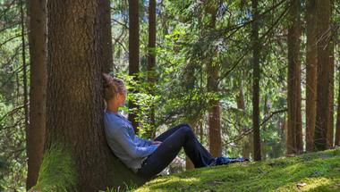 A fáktól tényleg boldogabbak leszünk?
