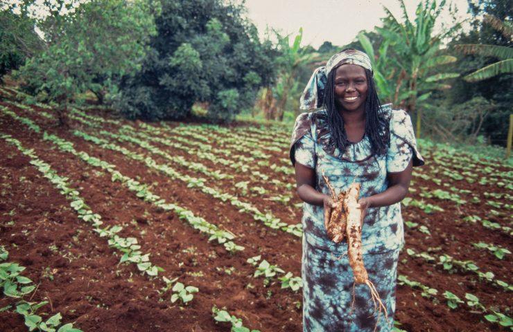 kenyan-activist-wangari-maathai-525194310-58c341ef5f9b58af5c638e4c-740x480.jpg