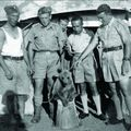 Vojtek, a katonamedve bámulatos története