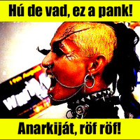 A punk megítélése a médiában