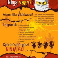 Ninja vagy?