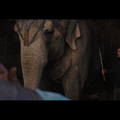 Water for Elephants (Movie)