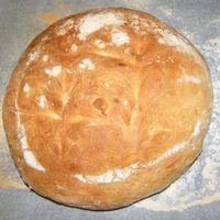 Első kenyerem