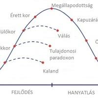 Vállalati életciklusok I.