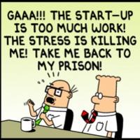 Startup vs. multikatona