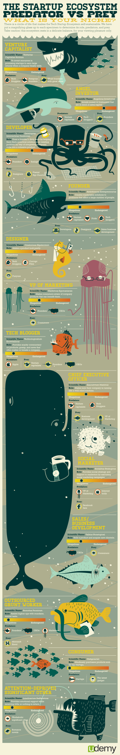 startup-ecosystem-infographic.png