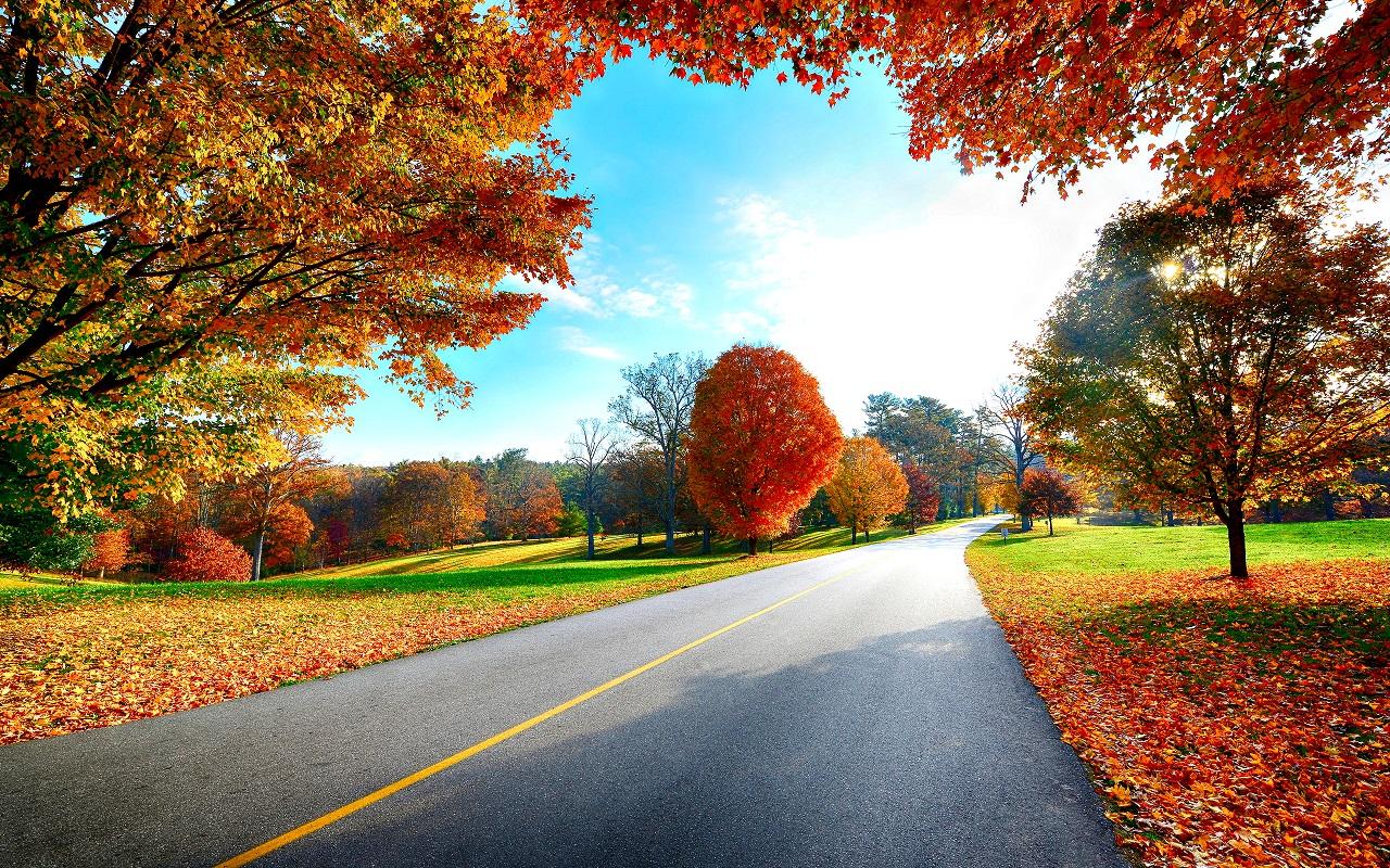 autumn-wallpaper-autumn-35867754-1280-800.jpg