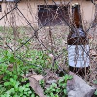 Nano sörfőző a Borsodi Sörgyárnál