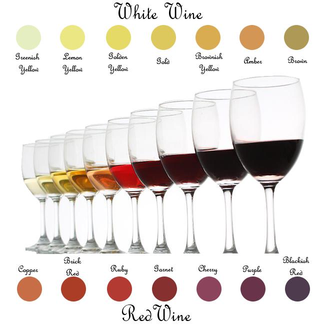 wine-tasting-color_F.jpg