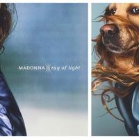 Madonna kutyául fest