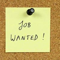 Újságíróként végeztem, munkát keresek...