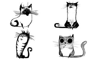 Cukiság túladagolás: érdekes macsekok