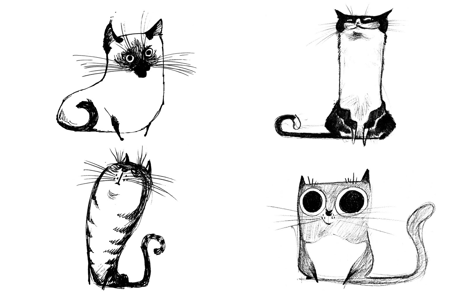 cat_drawings01_original.jpg