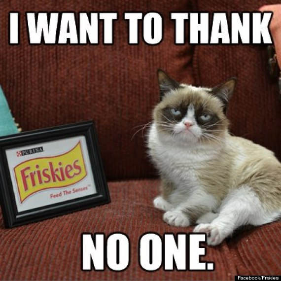 o-GRUMPY-CAT-FRISKIES-570.jpg
