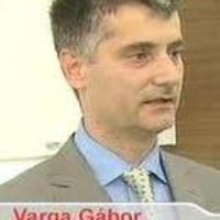 mit ér a hatóanyag-szakértő, ha magyar?