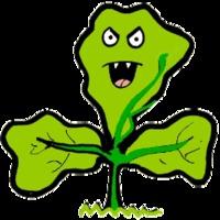 óvatosan a gyógynövényekkel?
