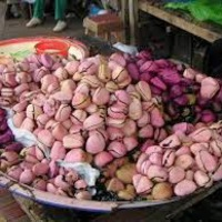 Kóladió az afrikai kultúrában
