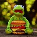 Kóladió bemutatása előtt a diétáról és az elhízásról