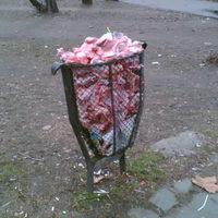 Tömegmészárlás Újpesten