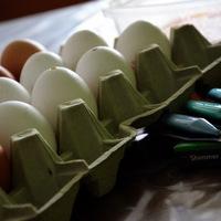 Így készülj a húsvétra a gyerekekkel!