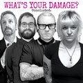 WHAT'S YOUR DAMAGE? - Concluded.