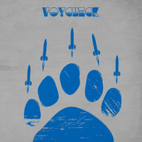 Voychech – This ain't No Joy Joy