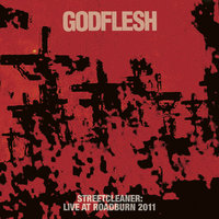 GODFLESH - Live At Roadburn 2011