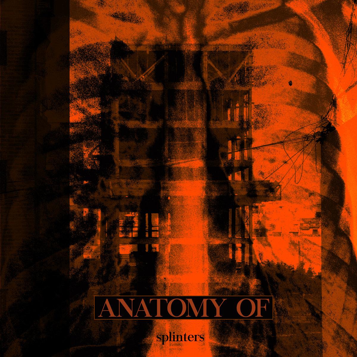 anatomyof.jpg