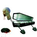 A halott koporsó