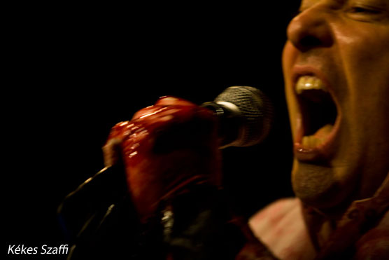 Jello Biafra koncert fotók képek