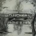 Szénceruza rajz a parkból