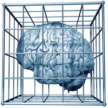braincage.jpg