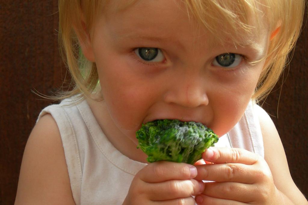 A WHO is menzareformot javasol az elhízott gyerekek miatt