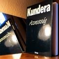 Milan Kundera: Azonosság
