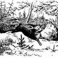 Büntető mesék - A fenyőfa