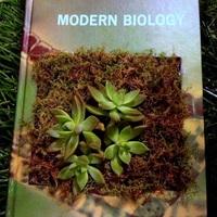 Virágzó könyvtár - Sherri Green: The Library Laboratory