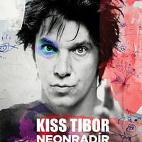 Lángszóróval, festékkel és plüssel készült Kiss Tibi életműve